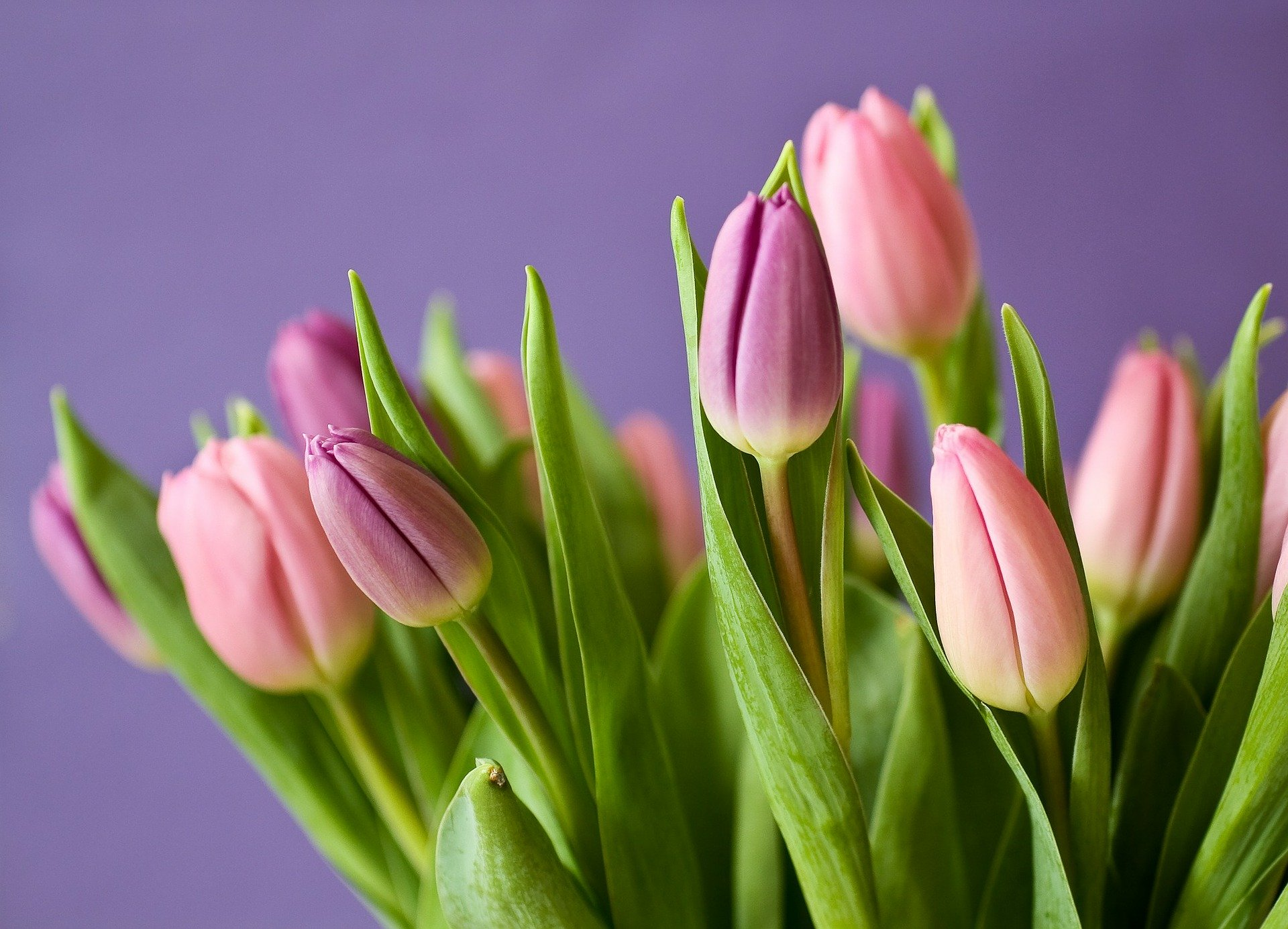 8 марта дети поздравили мам