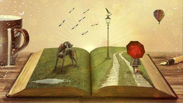 Собираем «Книгу знаний»